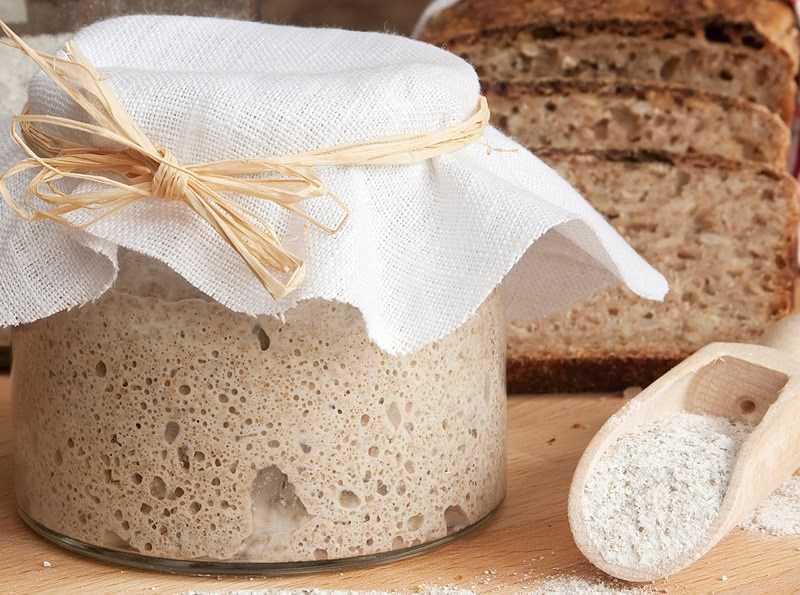 Bột - men bánh mì