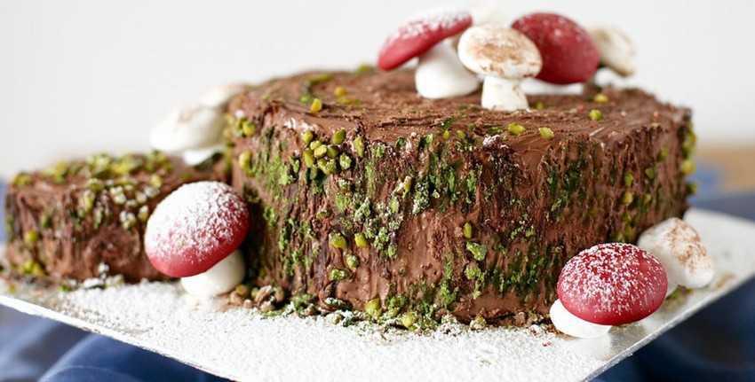 Bûche de Noël - bánh khúc cây