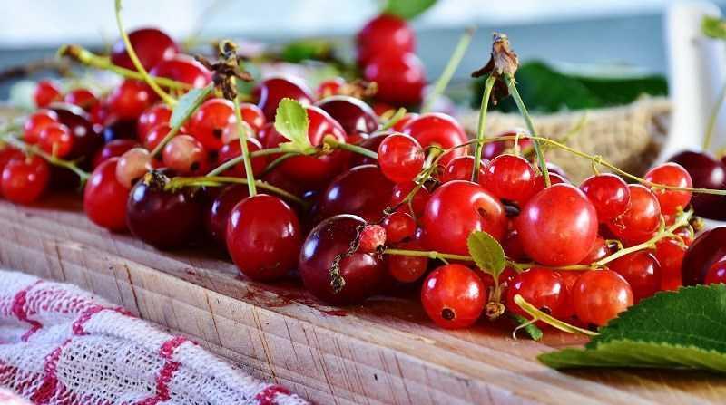 Dinh dưỡng của trái Cherry Tart