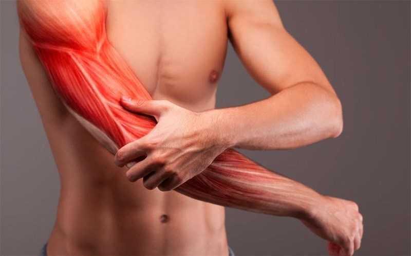 Quả anh đào chua có khả năng tăng sức mạnh và giảm đau cơ