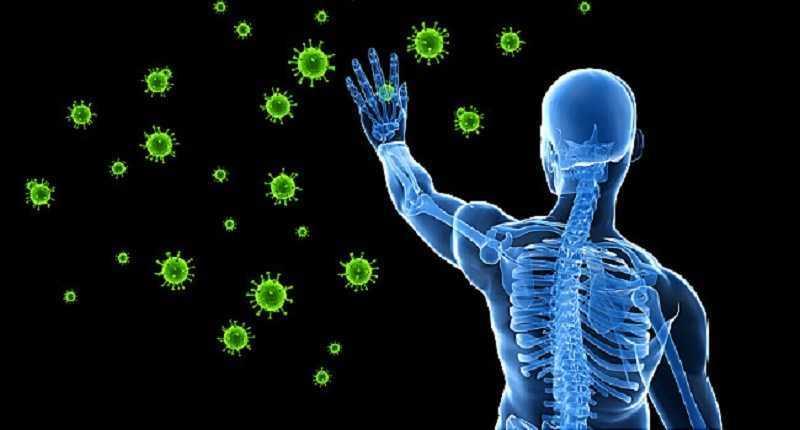 Anh đào tăng cường hệ thống miễn dịch