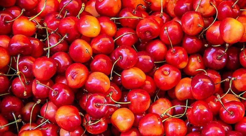 Cách chọn mua cherry