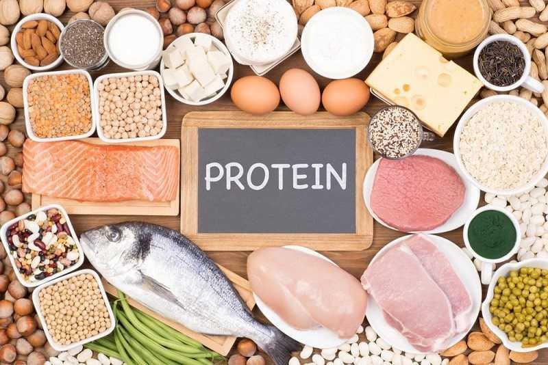 Nguồn protein lành mạnh
