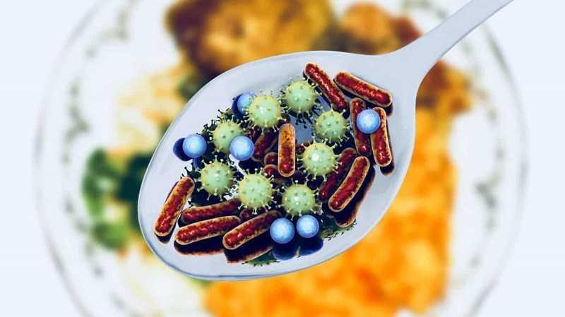 Tinh dầu hương thảo ức chế một số vi khuẩn gây ngộ độc thực phẩm