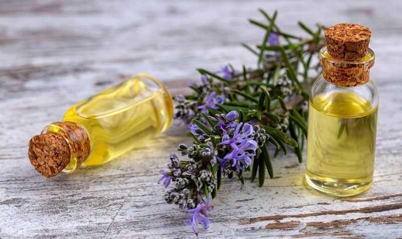 Tinh dầu hương thảo kết hợp với các loại tinh dầu khác