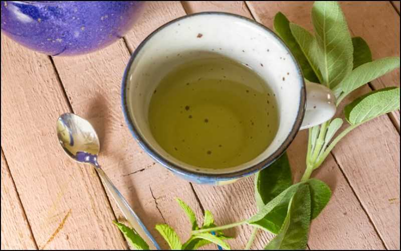 Trà xô thơm chứa nhiều chất chống oxy hóa