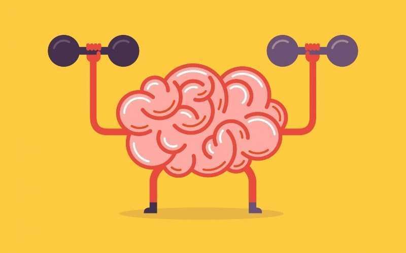 Sage giúp cải thiện và hỗ trợ sức khỏe não bộ