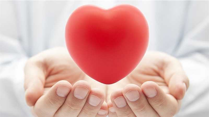 Trà rooibos thúc đẩy sức khỏe tim mạch
