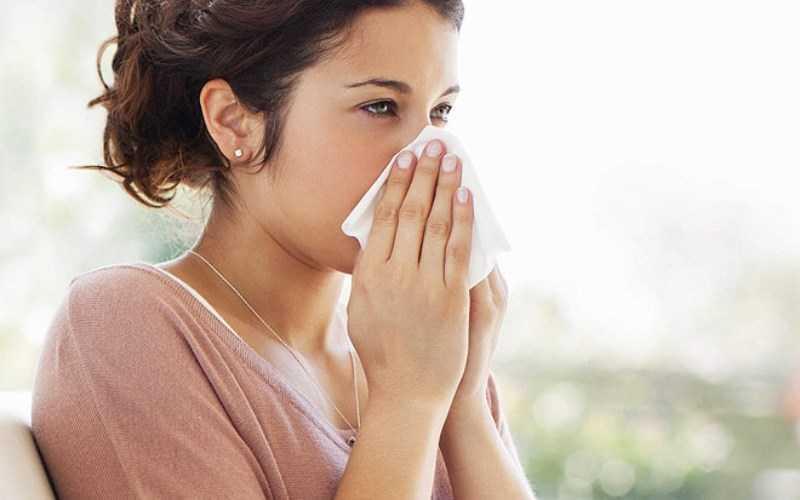 Trứng cút hỗ trợ điều trị viêm mũi dị ứng
