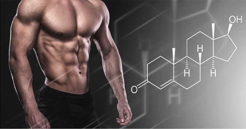 Nhân sâm đất tăng cường testosterol
