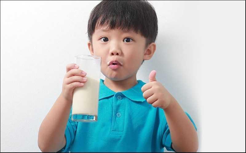 Sữa hạt điều cung cấp lượng dinh dưỡng dồi dào