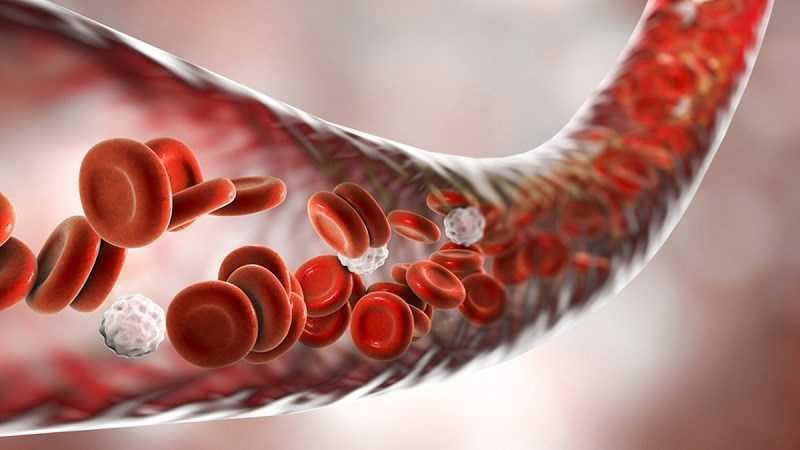 Giấm balsamic cải thiện lưu thông máu
