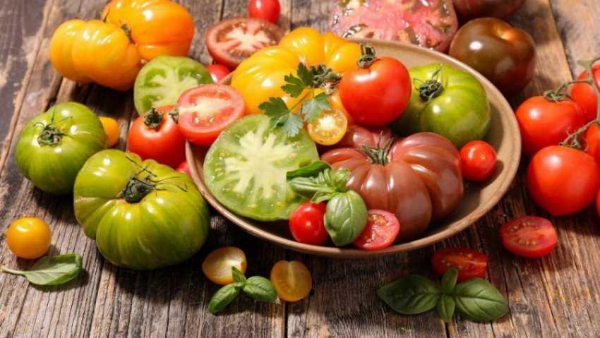 Các loại cà chua thường gặp, cách chọn và bảo quản cà chua