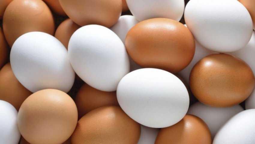Nên ăn trứng gà hay trứng vịt lộn?