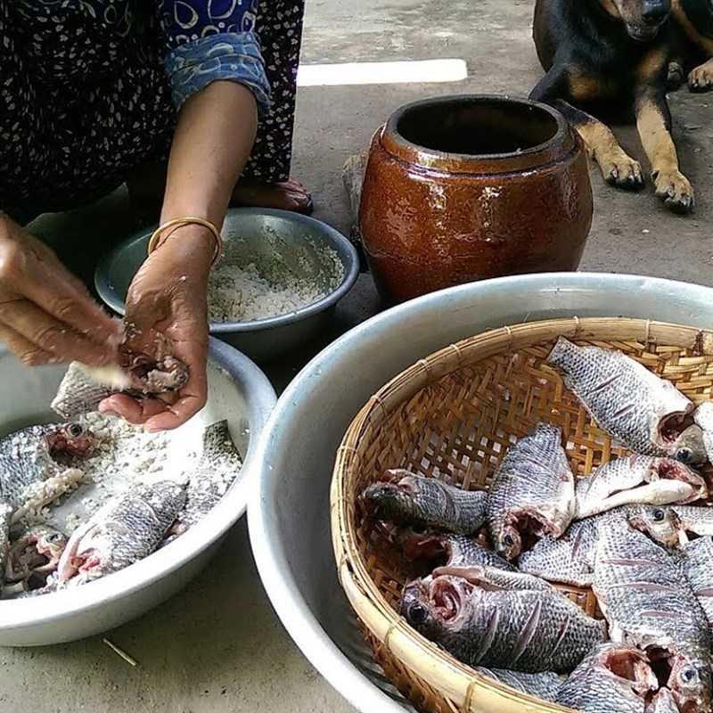 Bước 3 Cho cá vào hũ mắm cá rô lần 1 - Cách làm mắm cá rô phi
