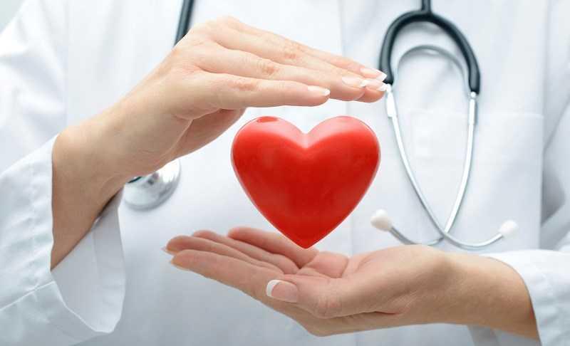 Ngòi ca cao giúp cải thiện sức kh�e tim mạch