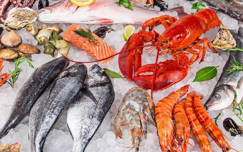Cá và hải sản