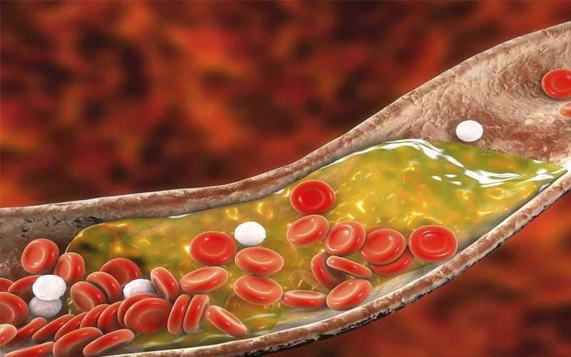 Tảo Spirulina Hỗ trợ điều hòa cholesterol