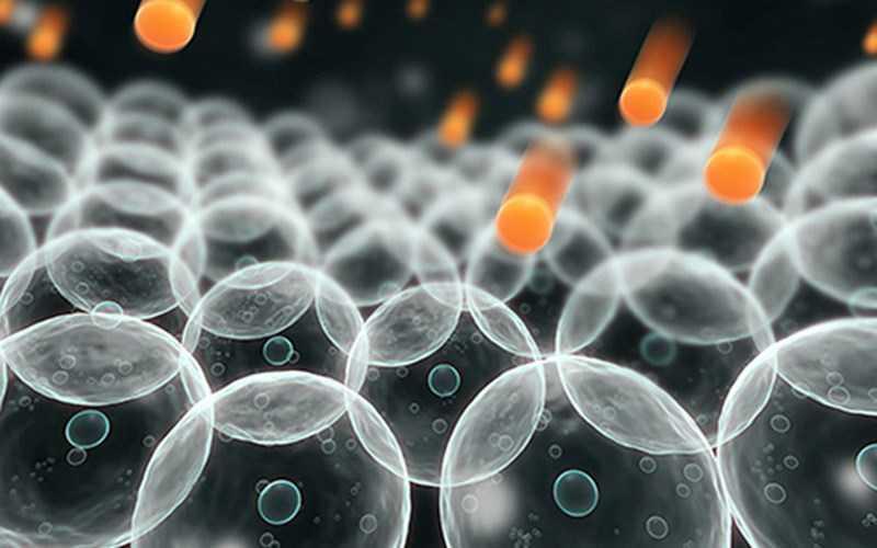 Spirulina Chống oxy hóa và chống viêm