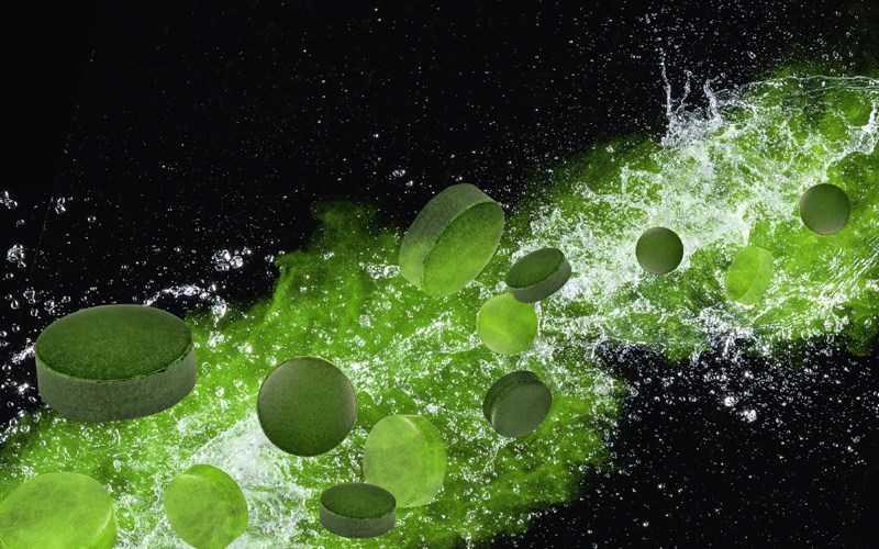 Spirulina là gì?