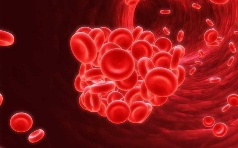 Spirulina có thể chống lại bệnh thiếu máu