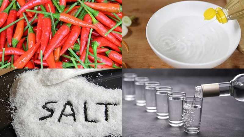 Nguyên liệu món ăn ngâm dấm ớt