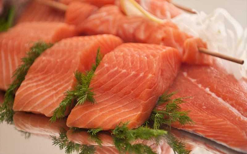 Cá hồi và cá béo
