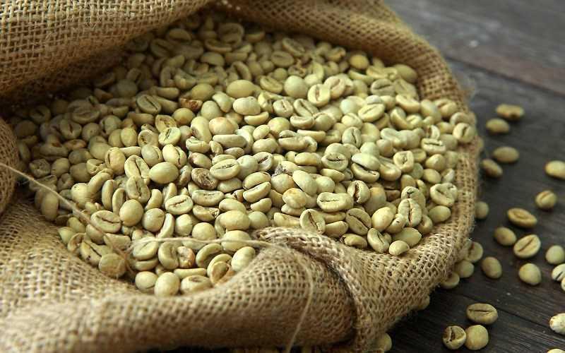 Cà phê xanh chứa một lượng lớn caffein