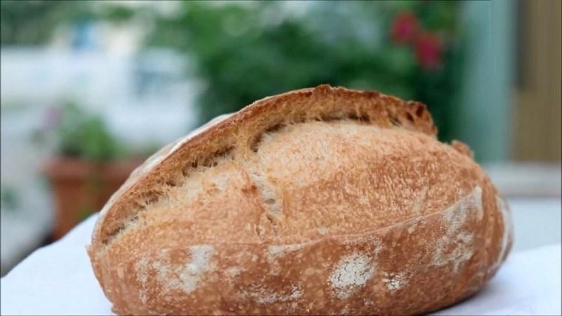 Bánh mì chua