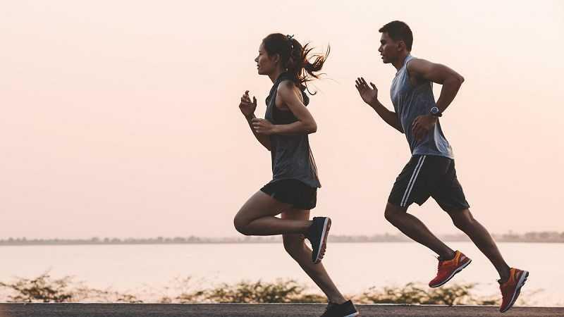 Yerba Mate giúp cải thiện hiệu suất thể chất của bạn