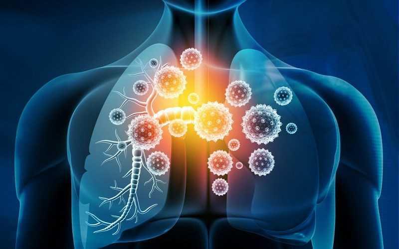 Yerba Mate giúp tăng cư�ng hệ thống miễn dịch