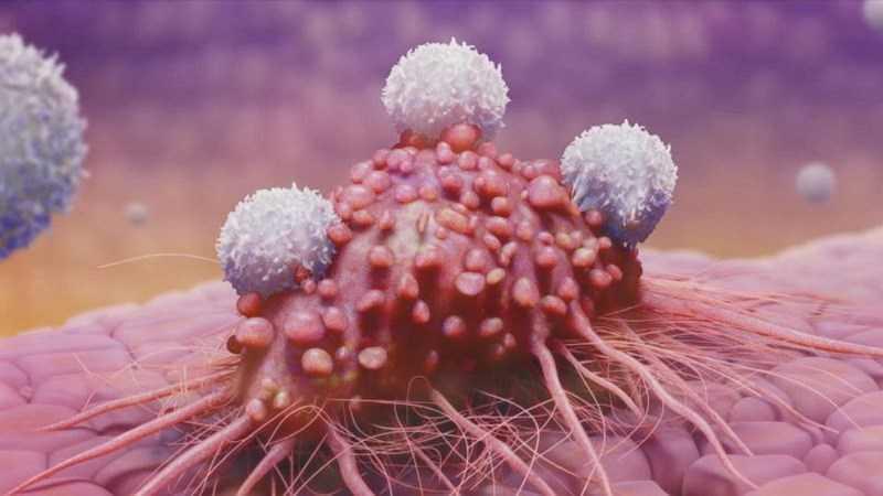 Cần tây ngăn ngừa ung thư
