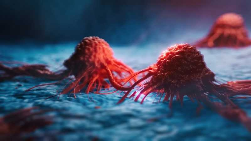 Gấc ngăn ngừa ung thư