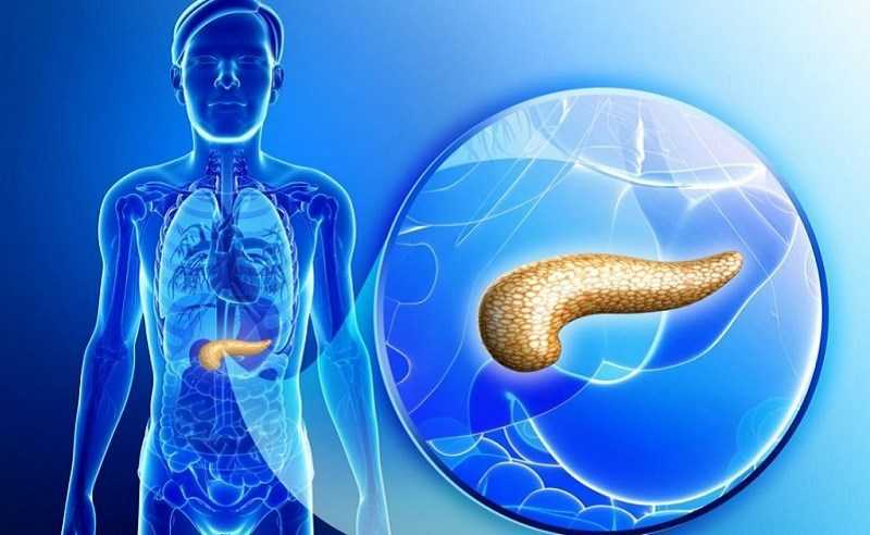 Bệnh đường tiêu hóa