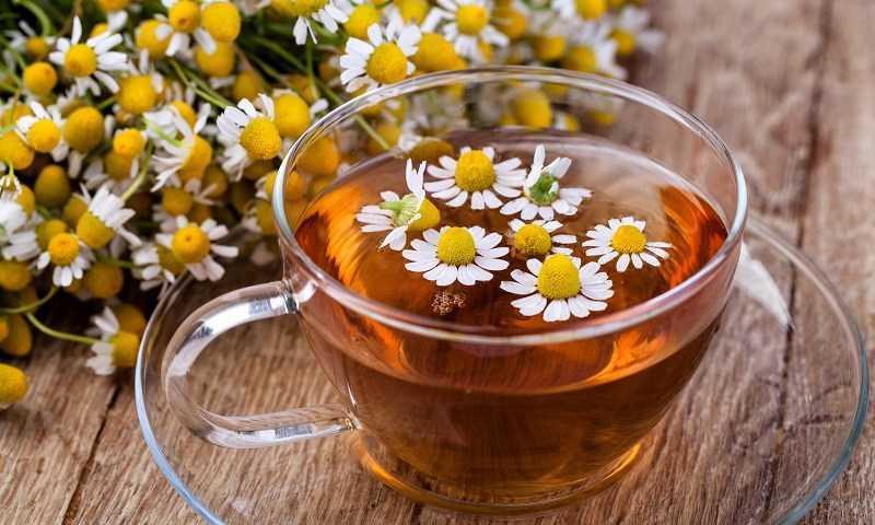 Đầy bụng khó tiêu nên dùng hoa cúc