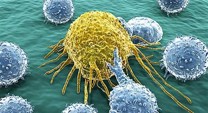 Ashwagandha có thể giảm ung thư
