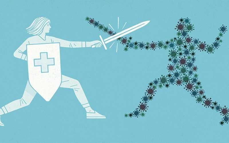 Nhục đậu khấu tăng cư�ng khả năng miễn dịch