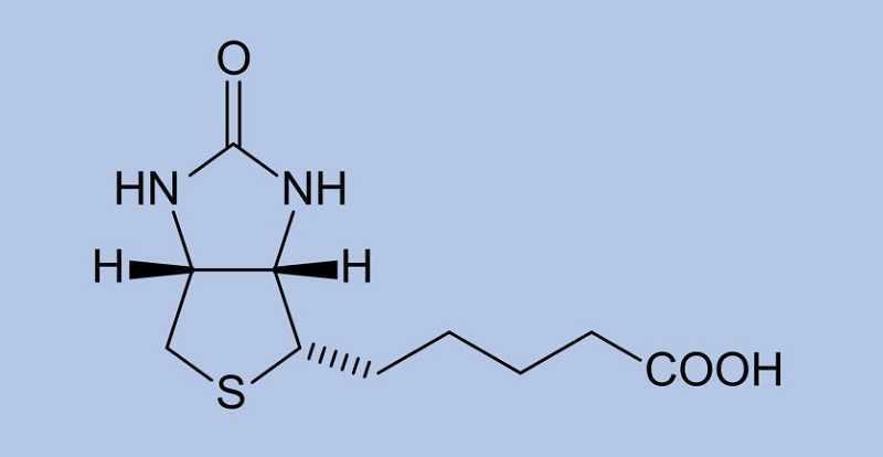 Biotin là gì?