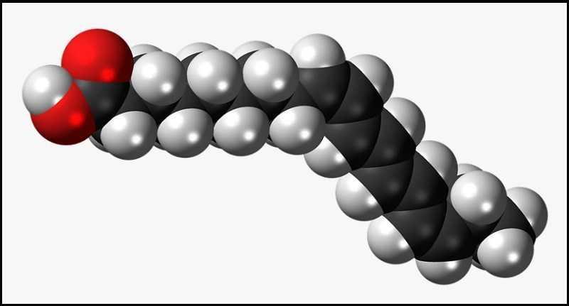 Ghee chứa axit linoleic liên hợp
