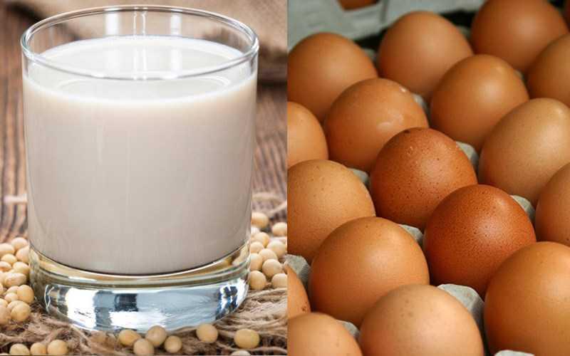 Sữa đậu nành và trứng
