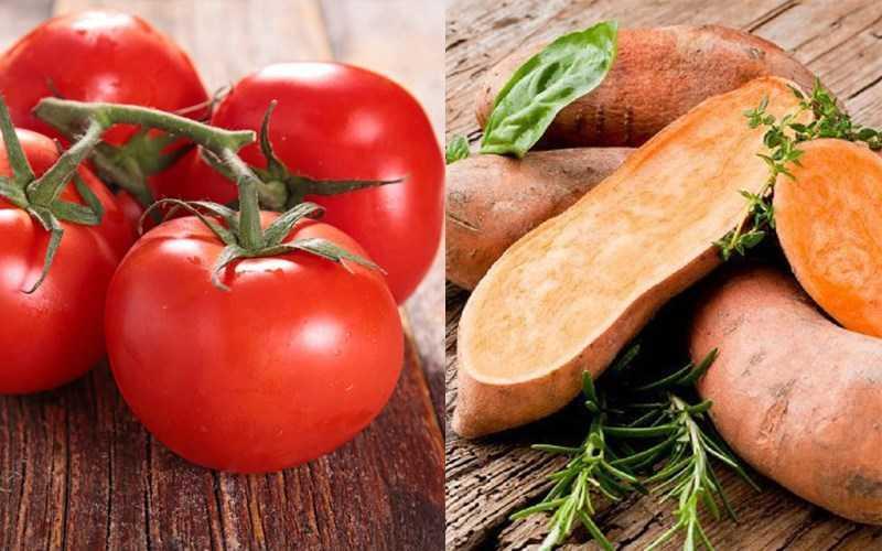 Cà chua và khoai lang, khoai tây