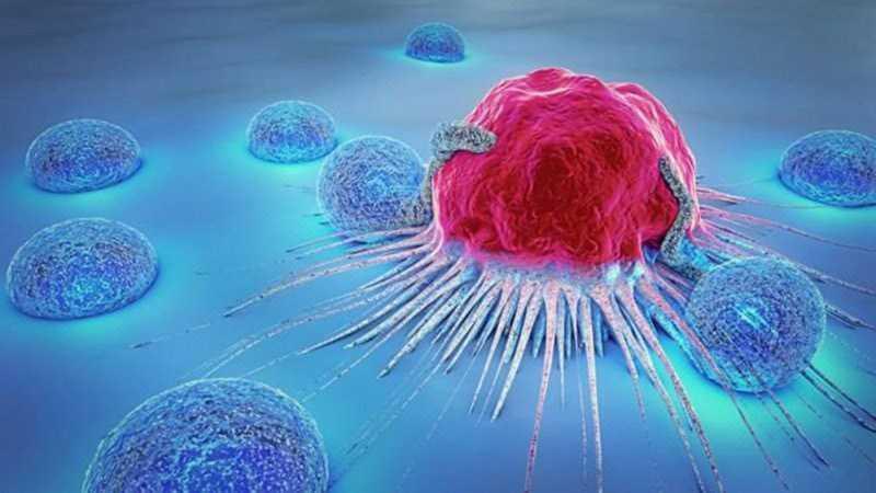 Tỏi đen ngăn ngừa ung thư