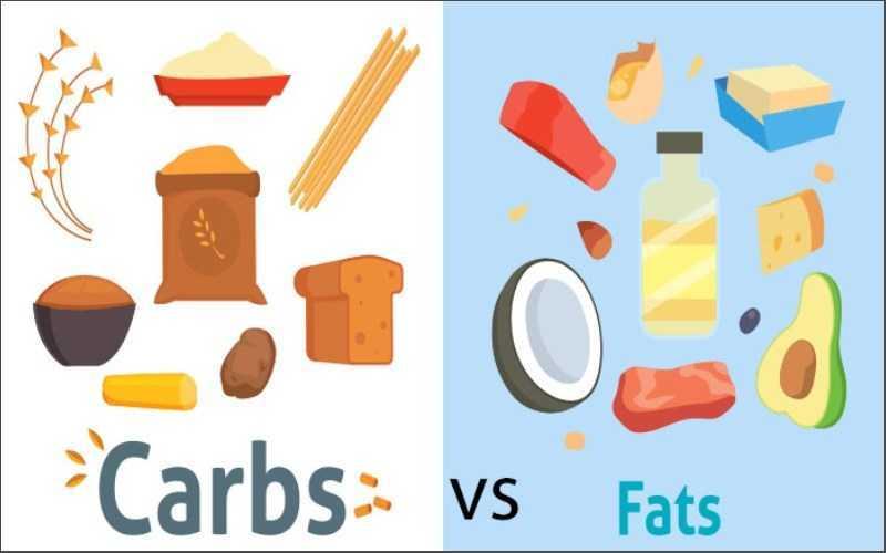 Ăn tinh bột và chất béo