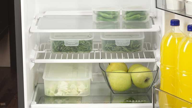 Nhiệt độ tủ lạnh chỉ ức chế sự phát triển của vi sinh vật