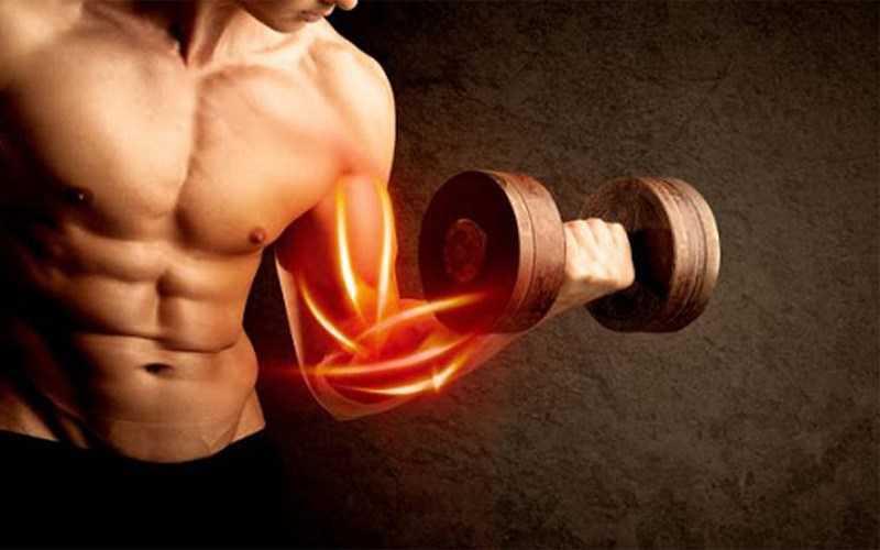 Tăng cường khối lượng cơ và sức khỏe của xương