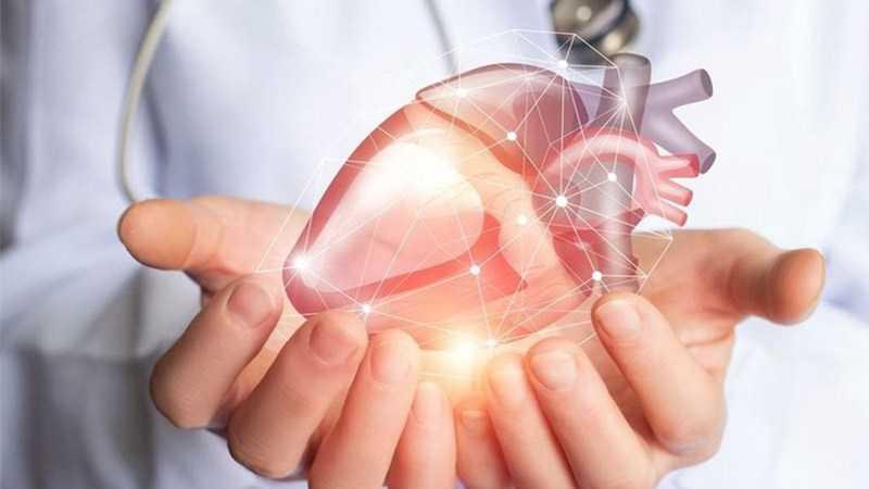 Ngô giúp giảm nguy cơ mắc bệnh tim mạch