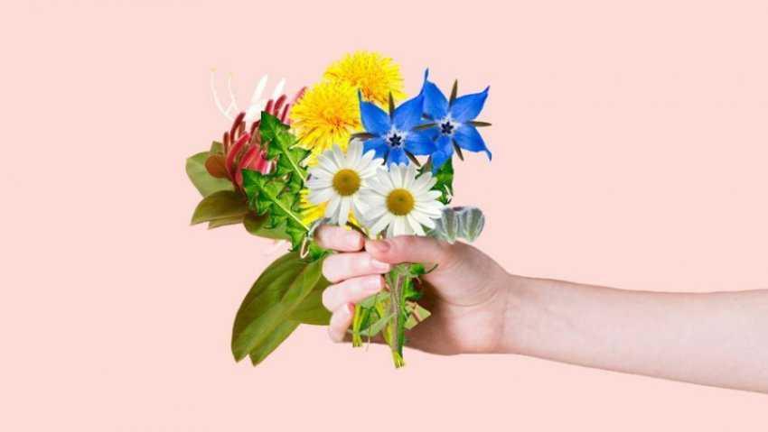 Hoa khỏe
