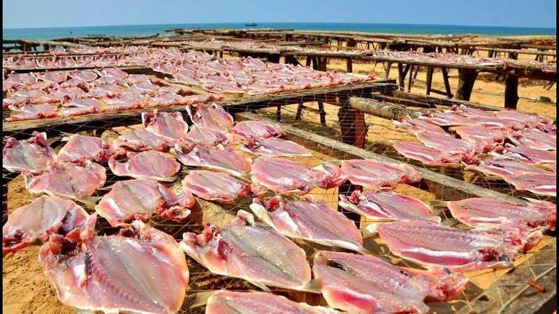 Cách làm khô thịt cá