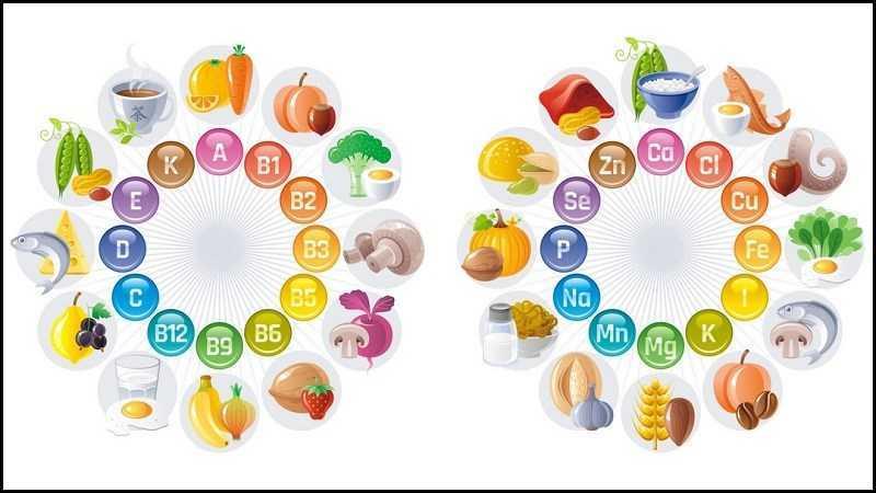 Rau sống cung cấp nhiều loại vitamin và khoáng chất
