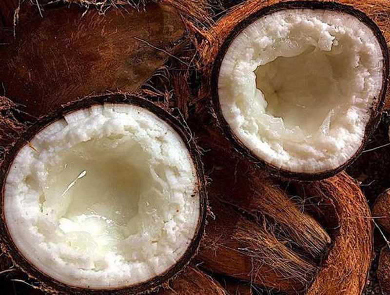 Dừa sáp bao nhiêu 1 trái?